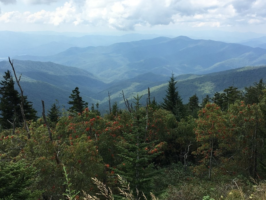 View from Clingmans Dome,