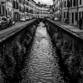thepixelclub-street-lucca-tuscany-italy-8422