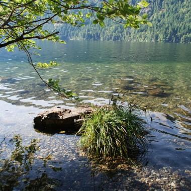 Cameron Lake, Vancouver Island - June 5, 2016