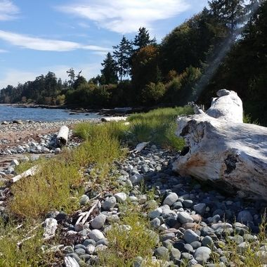 French Creek beach, Vancouver Island - SEPT 3rd, 2016