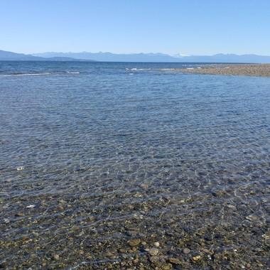 From the end of Parksville Park TIDE OUT - Sep 13, 2016