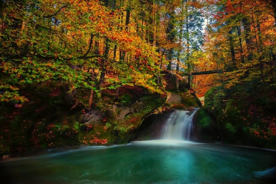 Autumn Dream by Dawn van Doorn.