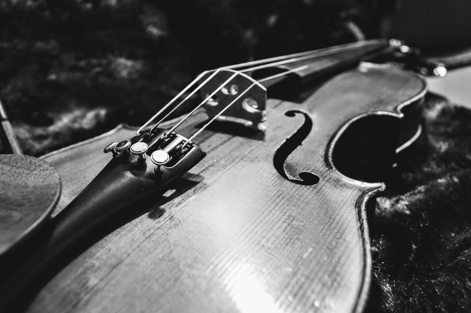 Colin-Mezin Fils violin, created 1928.