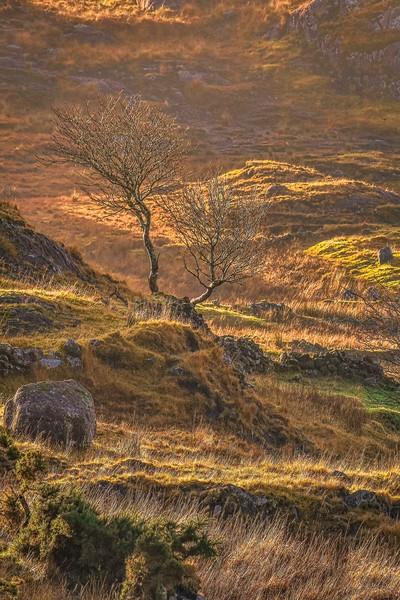 Golden dawn, Donegal mountains