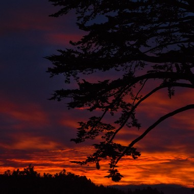 Fire Near Dawn on 20170126 Half Moon Bay Ca  #027 of 365