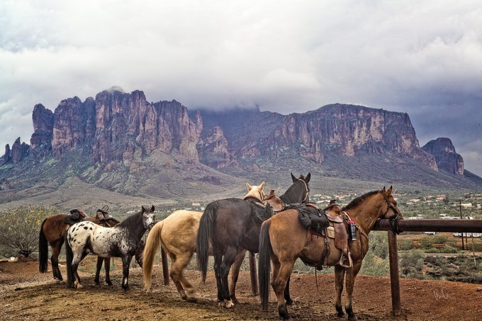 Horse Mt by brianadamson - Image Of The Month Photo Contest Vol 18
