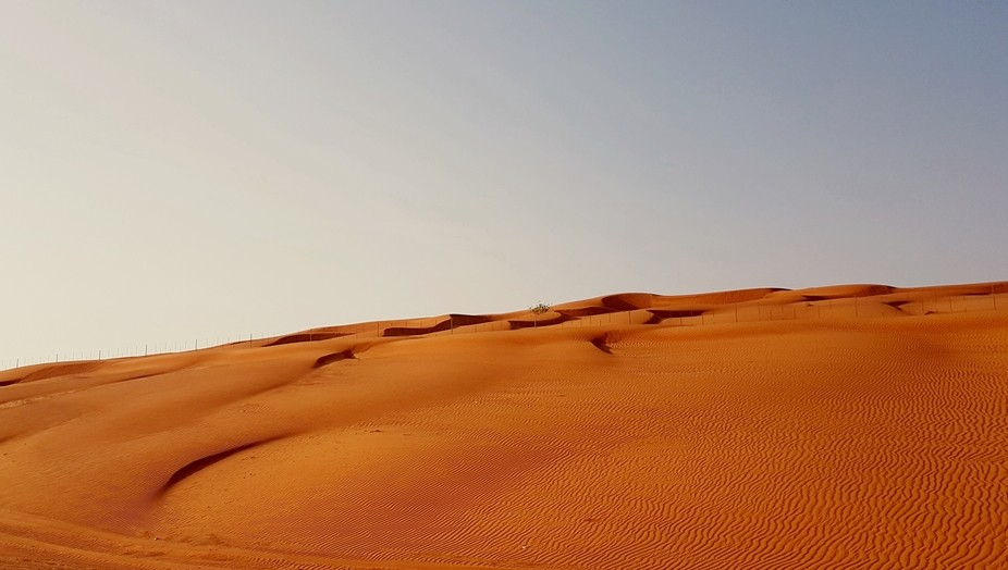 Desert in the UAE