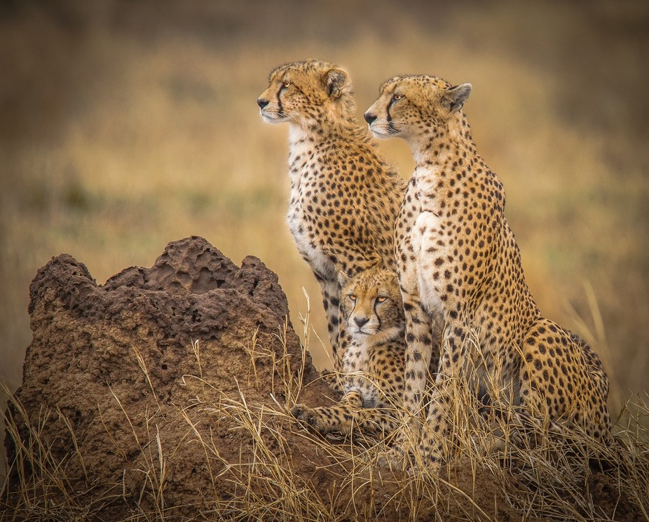 Hunting with mom