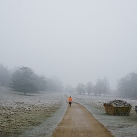runner in Richmond Park, on a winter morning