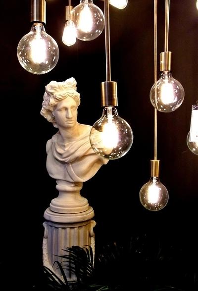 RIMG3106 bulbs