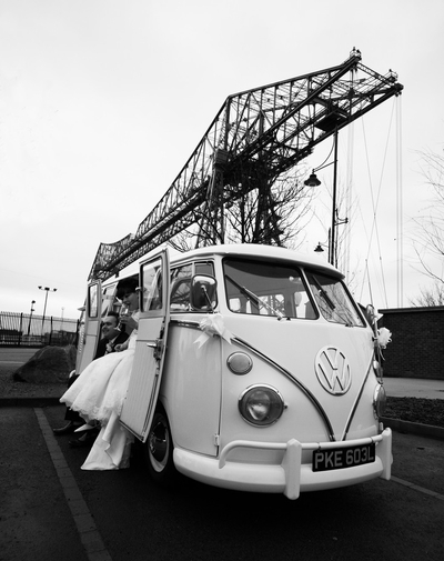 wedding bug