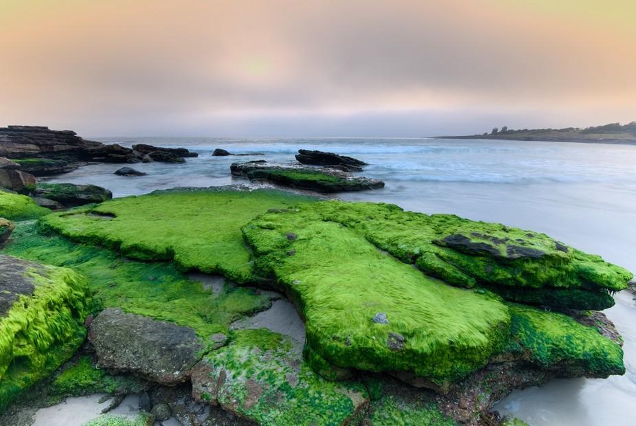 Coastal Moss Rocks