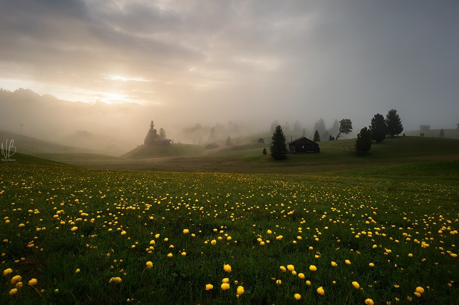 Dramatic dawn at Alpe di SIusi....