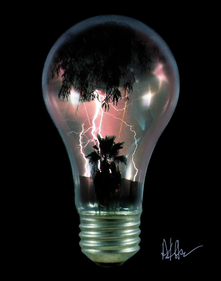 A composition of several photos and of course a clear light bulb. The lightning is absolutely real and so are the palm trees, not to mention the overhanging eucalyptus.
