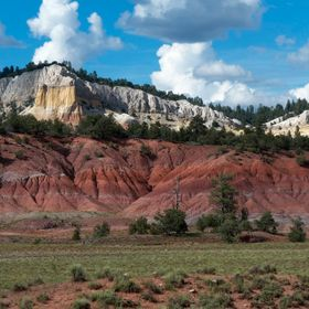 Rincon Colorado in northern NM exhibits almost the entire color palette of Nature in New Mexico : geology (sandstone in white, yellow, peach; sha...