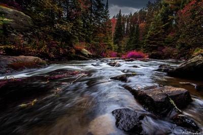 The Rivers Edge