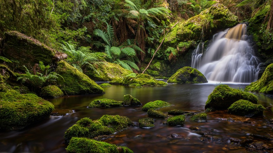 Hebe Falls Hidden away in the Tasmanian Wilderness