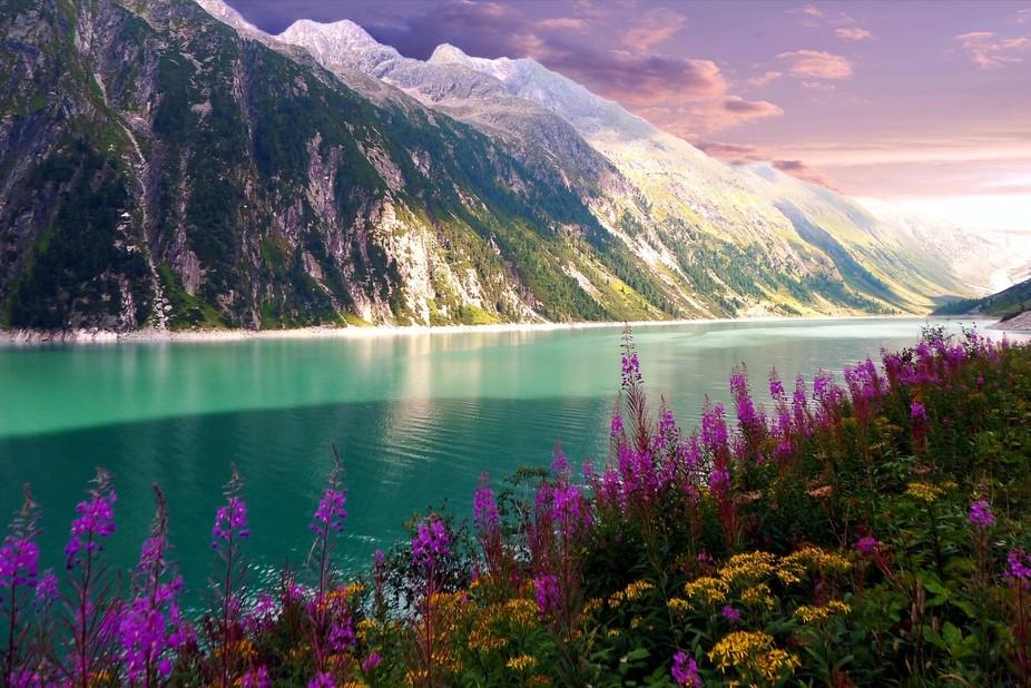 Flowered Lake by Dawn van Doorn.