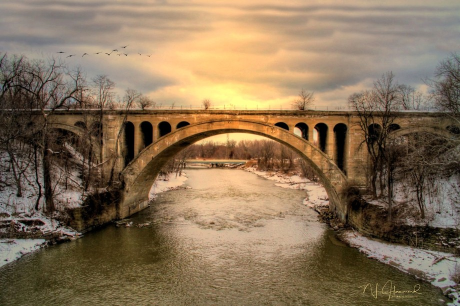 """I pass this bridge on the way home from work every day, and I thought """"I'm gonn..."""