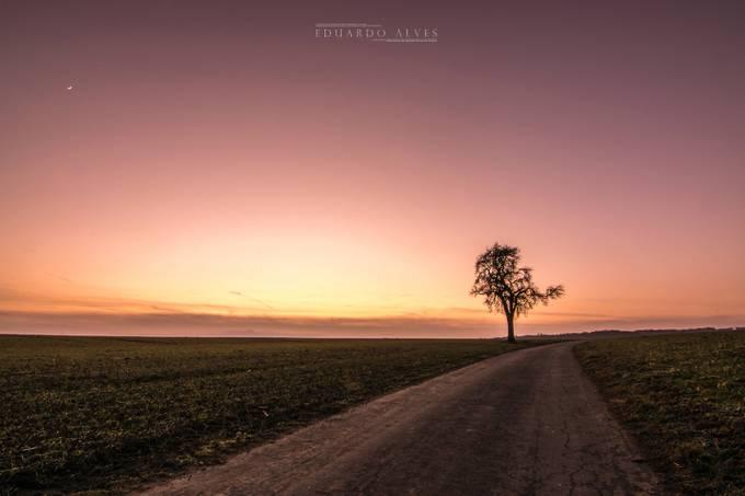 l o n e l y  by EduardoAlvesLux - Country Roads Photo Contest