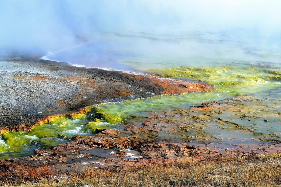 This particular area in Yellowstone Park called my attention for the beautiful and reach colors t...