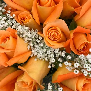 Bouquet of fresh peach colored roses.