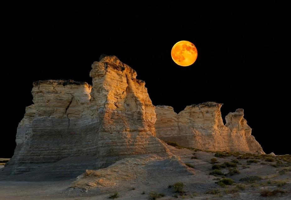Harvest moon*