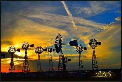 Windmills 33