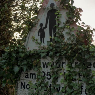 A warning sign hidden by ivy. Thought provoking