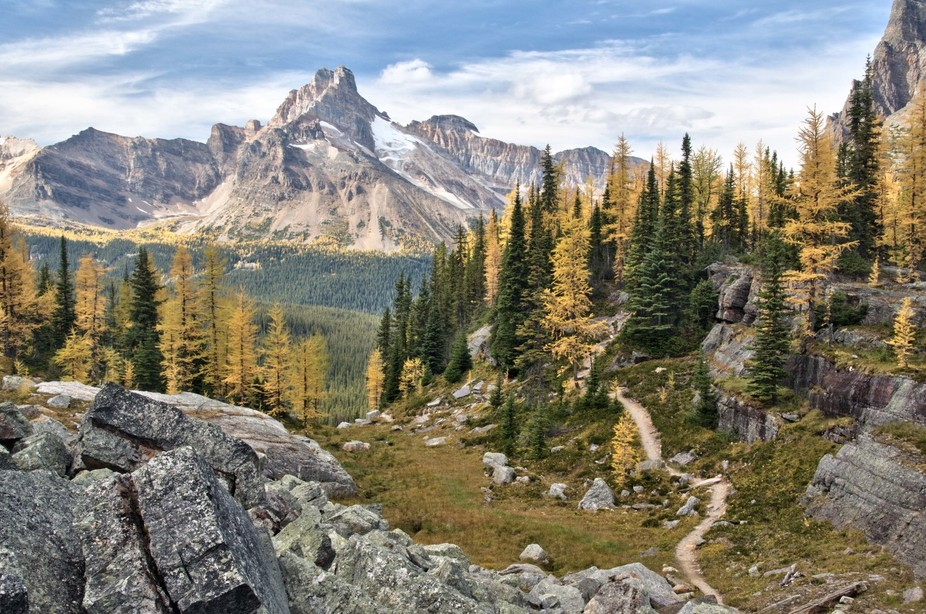Looking north from Opabin Plateau in Yoho National Park. British Columbia, Canada