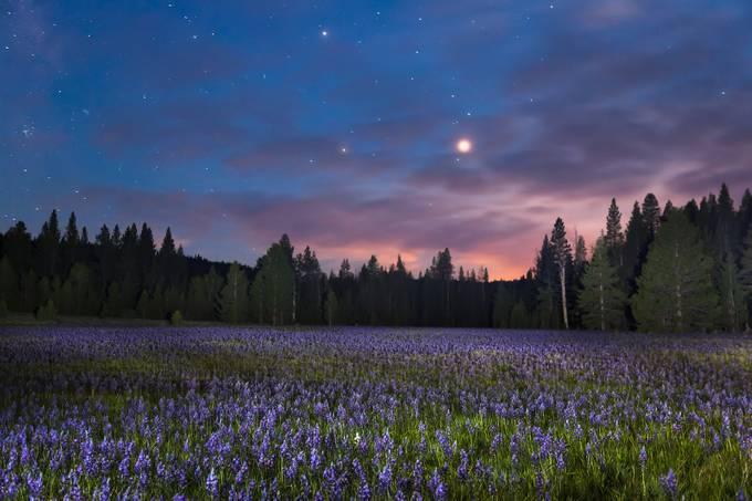 Sagehen Meadow at Night 1 by ScottShot - Unforgettable Landscapes Photo Contest by Zenfolio