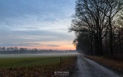 Dirt Road Twilight