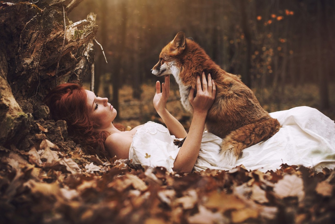 How Many Of These Fairytale-Like Photos Have You Seen?
