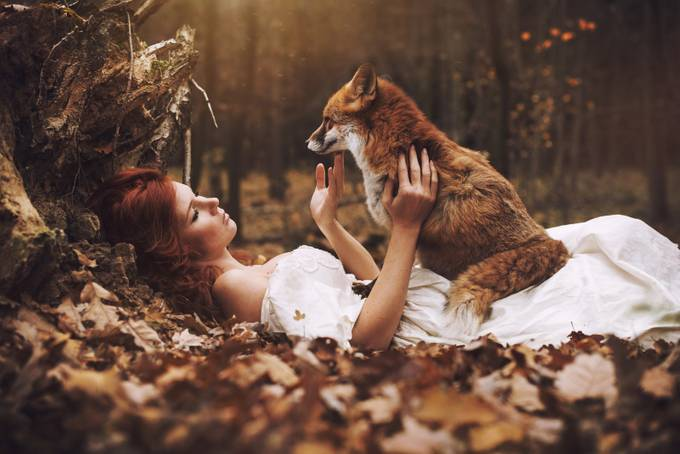 Two fox... by MarketaNovak - Fairytale Moments Photo Contest