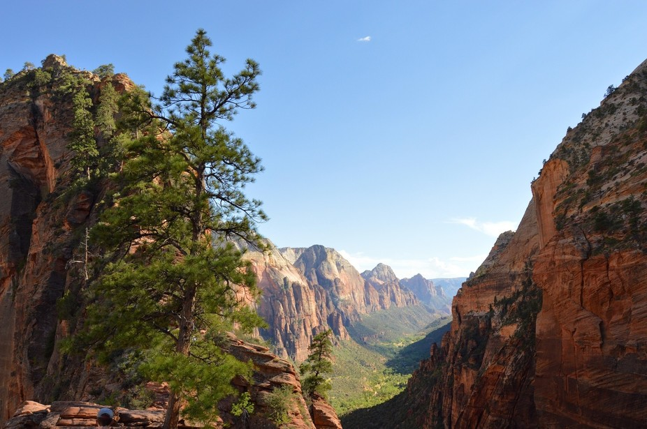 A beautiful look into a valley at Zion National Park.