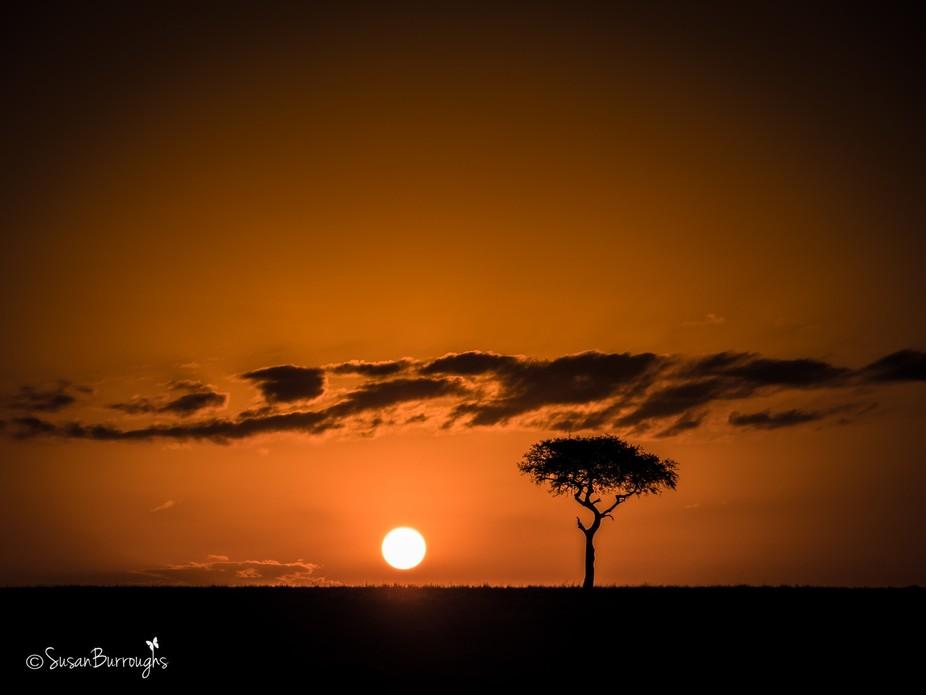 SB Kenya Africa M2281452 20170128