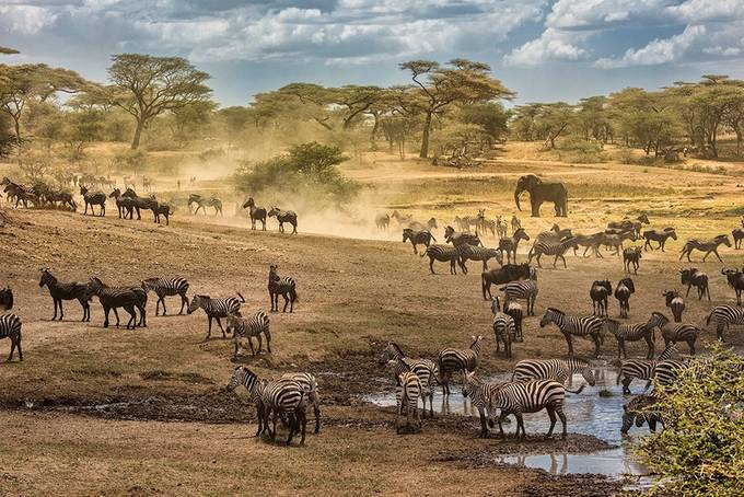 Tanzania 1 by mjkirkland - Explore Africa Photo Contest