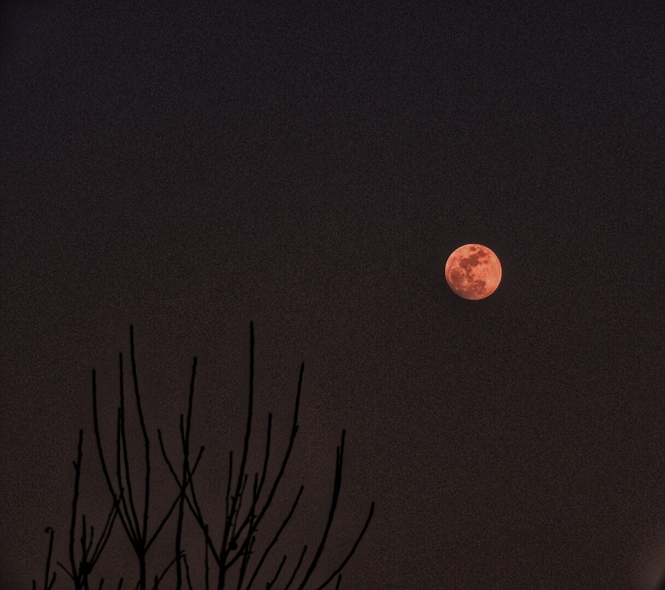 Got this shot around dinner time as the moon was rising. Still one of my favorite subjects