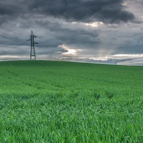 Field of wheat and storm clouds