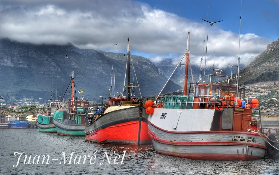 A trip to Cape Town harbour.