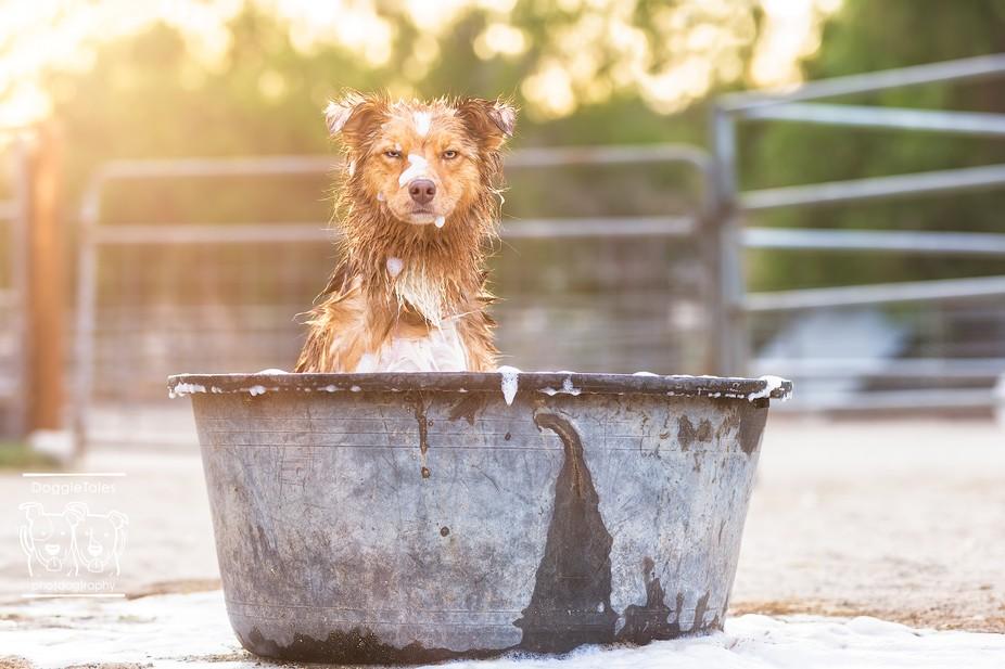 Dixie Ranch Bath