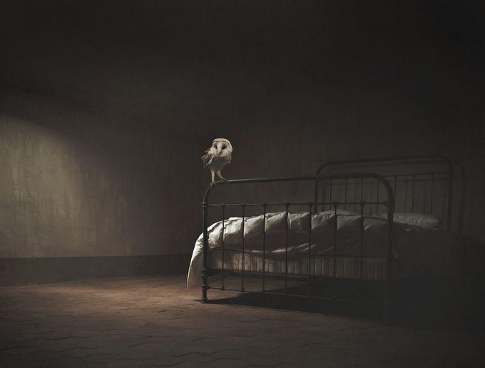 """Small Quiet Room"" by YouAreHereToRiskYourHeart - The Magic Of Editing Photo Contest"
