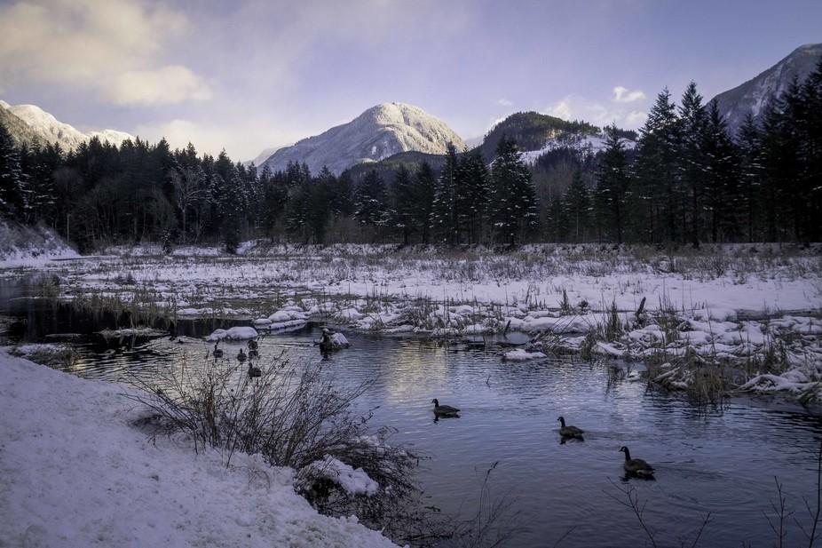 Winter at Thacker Marsh