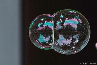 Double Bubble Reflection