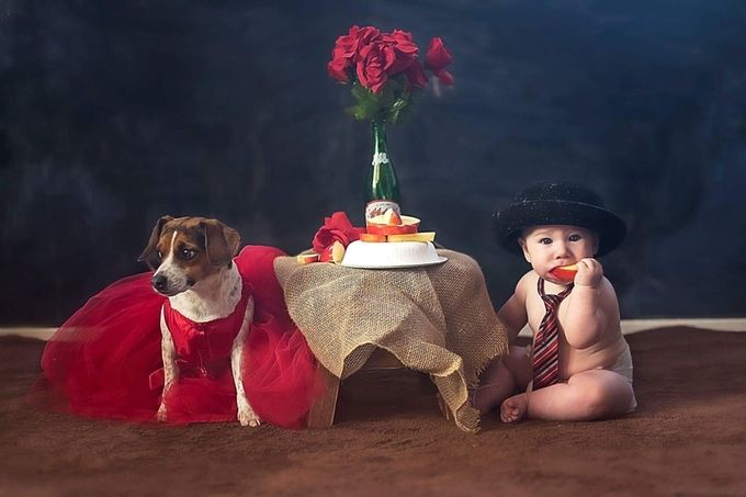 Blind date gone wrong... by christievillalobasricchinievans - Kids And Pets Photo Contest