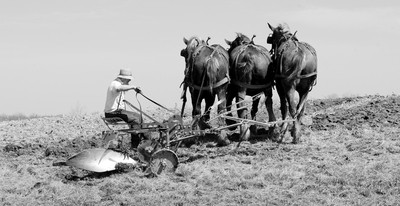 Plowing horse power