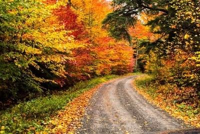 Fall Road in Western Pennsylvania