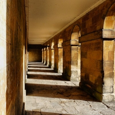 PhotoSynthetic- Sunny Arches
