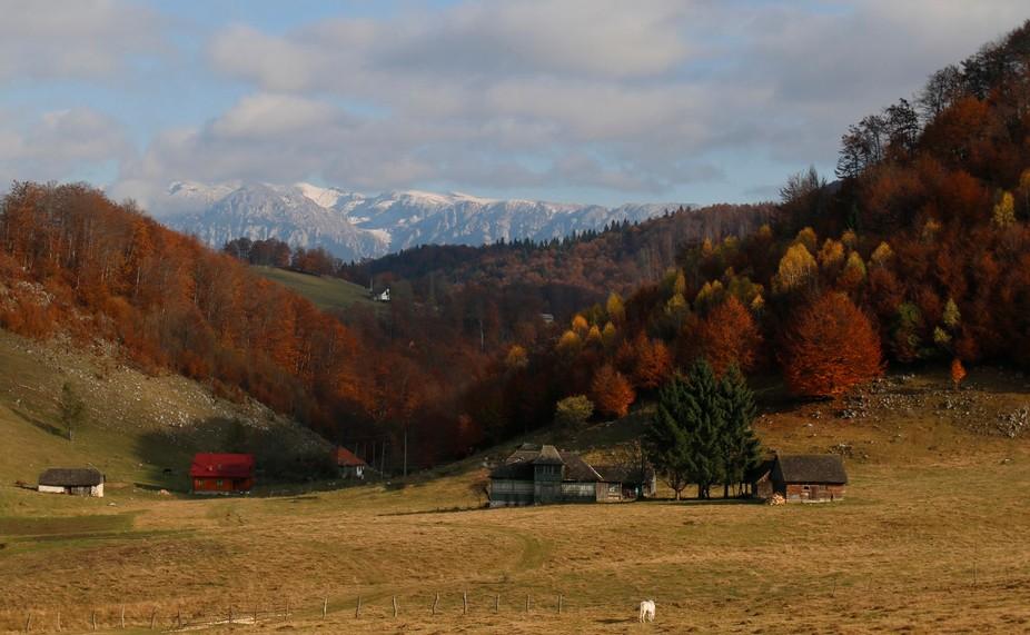 Ciocanu, Romania
