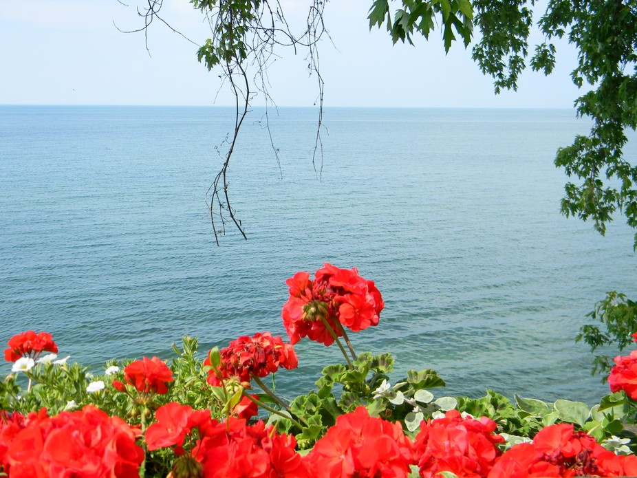 Lake Ontario @ Olcott Beach